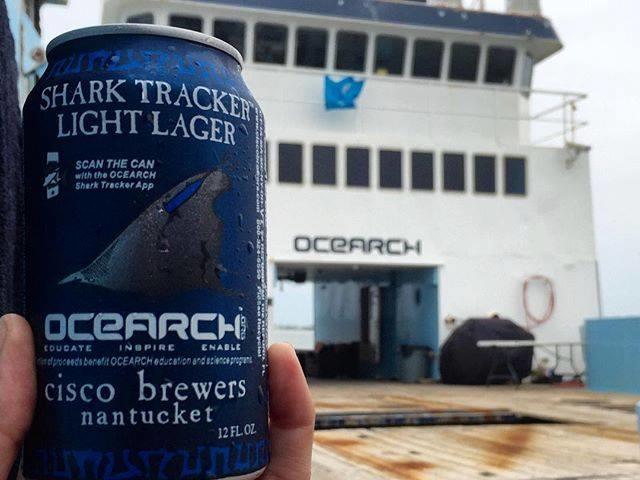 OCEARCH Shark Tracker Light Lager